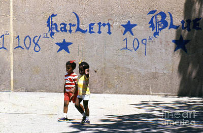 Photograph - Harlem Blue by Erik Falkensteen