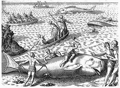 Harpooning Whales, C1590 Print by Granger