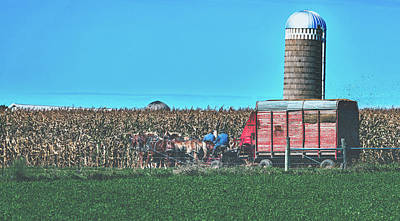 Photograph - Harvest In Amish Country - Elkhart County, Indiana by Library Of Congress
