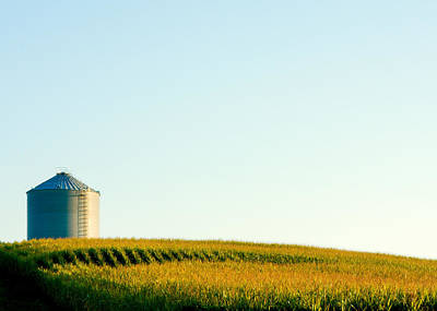 Corn Crib Photograph - Harvest Time by Todd Klassy
