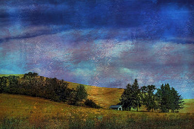 Harvested Art Print by David Patterson