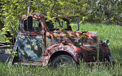 Maine Meadow Photograph - Has Caught Some Rust by Richard Bean
