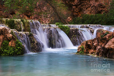 Photograph - Havasu Creek Grand Canyon 2 by Bob Christopher
