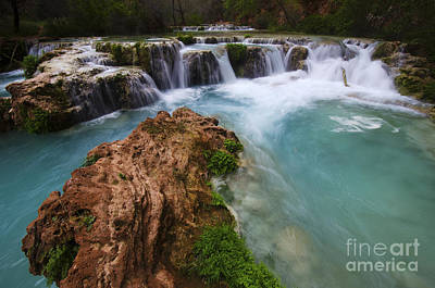 Photograph - Havasu Creek Grand Canyon 10 by Bob Christopher
