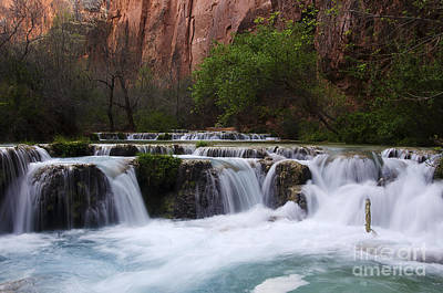 Photograph - Havasu Creek Grand Canyon 11 by Bob Christopher