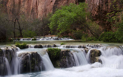 Photograph - Havasu Creek Grand Canyon 12 by Bob Christopher
