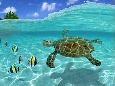 Hawaiian Fish Digital Art - Hawaiian Sea Turtle Two by Stephen Jorgensen