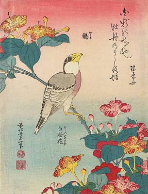 Edo Period Painting - Hawfinch And Marvel-of-peru by Katsushika Hokusai