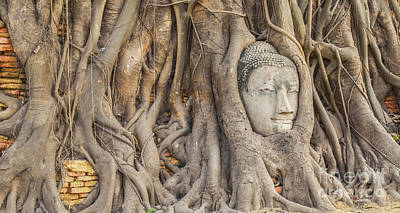 Serenity Prayer Photograph - Head Of Sandstone Buddha by Anek Suwannaphoom