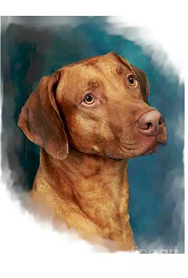Ridgeback Digital Art - Head Study by Maxine Bochnia