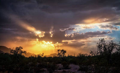 Photograph - Heavenly Desert Skies  by Saija Lehtonen