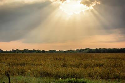 Spot Of Tea - Heavens Light by Dennis Wells