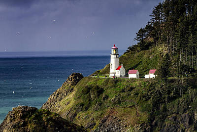 Photograph - Heceta Head Historic Oregon Lighthouse by Teri Virbickis