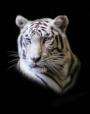 Tiger Digital Art - Hector by Julie L Hoddinott