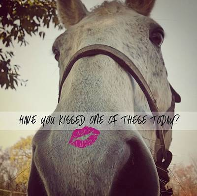 Photograph - Hello There Kiss Quote by JAMART Photography