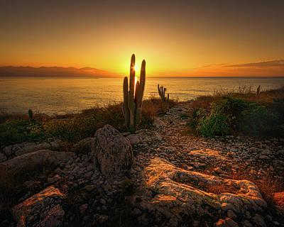 Photograph - Hellshire Sunrise by Lechmoore Simms