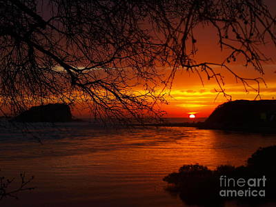 Photograph - Here Comes The Sun by Trena Mara
