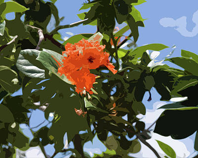 Modern Sophistication Beaches And Waves Royalty Free Images - Hibiscus rosasinensis with fruit on the Indian River in Florida Royalty-Free Image by Allan  Hughes