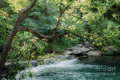 Photograph - Hidden Waterfall by Iris Greenwell