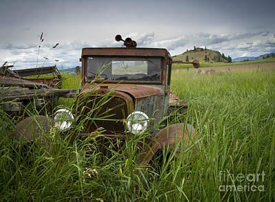 Photograph - Hiding by Idaho Scenic Images Linda Lantzy