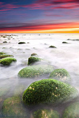 Photograph - High Tide by Jorge Maia
