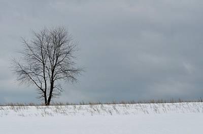 Photograph - Hillside Farm by JAMART Photography