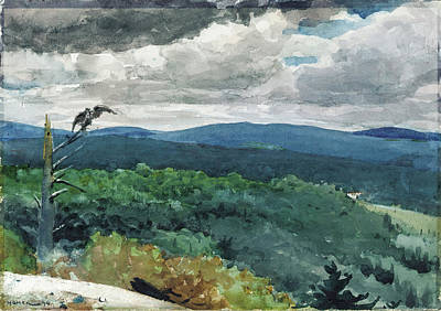 Winslow Homer Drawing - Hilly Landscape by Winslow Homer