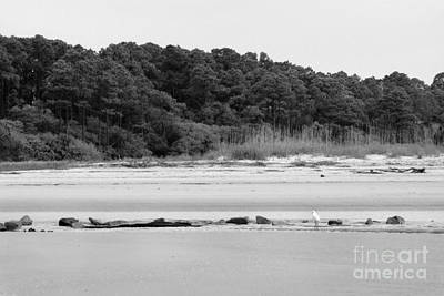 Photograph - Hilton Head Island Shoreline In Black And White by Angela Rath