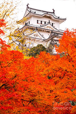 Himeji Castle - Japan Art Print by Luciano Mortula