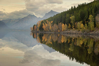 Art Print featuring the photograph His Reflections by Al Swasey