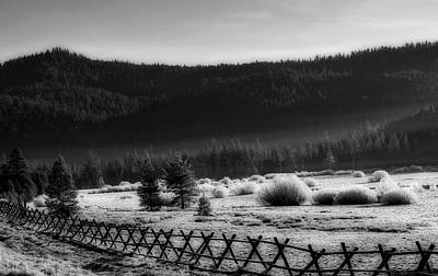 Photograph - Hoarfrost In Squaw Valley, California by L O C
