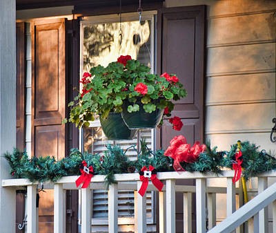 Photograph - Holiday Cheer by Linda Brown