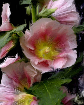 Hollyhock Heaven Art Print
