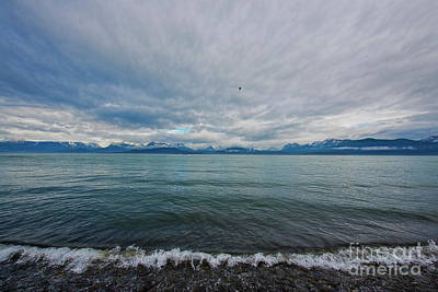 Photograph - Homer Alaska by David Arment