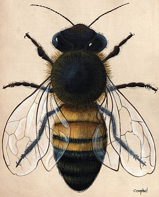 Beekeeper Painting - Honey Bee by Timothy Campbell