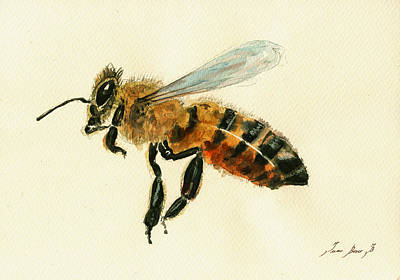 Honey Bee Watercolor Painting Print by Juan  Bosco