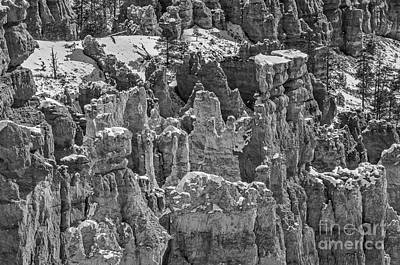 Photograph - Hoodoos After A Snowfall In Bryce Canyon by Sue Smith