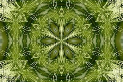 Digital Art - Hordeum Jubatum Kaleidoscope by J McCombie