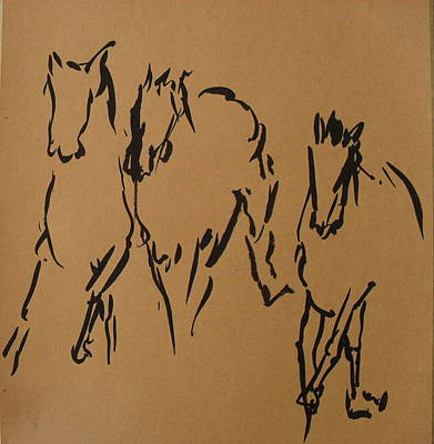 Wild Racers Mixed Media - Horse 04 by Mohd Raza-ul Karim