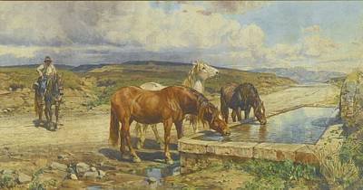 Horses Drinking From A Stone Trough Art Print by Enrico Coleman