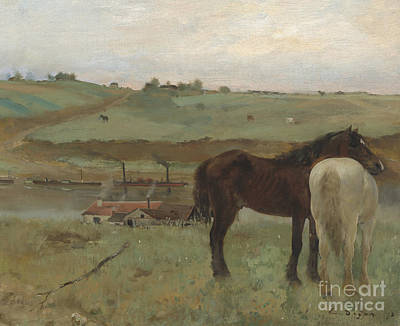 Horses In A Meadow Print by Edgar Degas