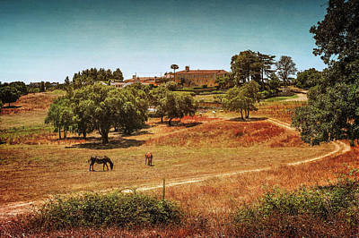 Photograph - Horses In Landscape by Carlos Caetano