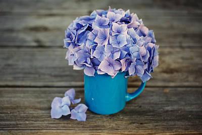 Tin Photograph - Hortensia Flowers by Nailia Schwarz