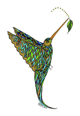 Drawing - Hummingbird by Barbara McConoughey