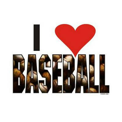 Photograph - I Love Baseball by Sheila Mcdonald