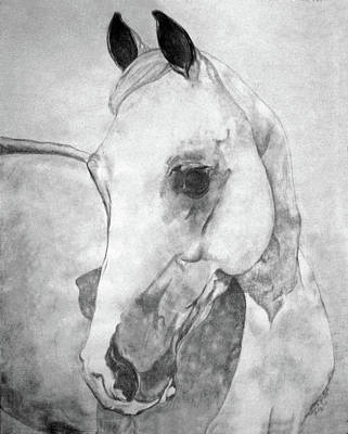 Custom Horse Portrait Drawing - Ibn Galer by Patricia Yourkoski