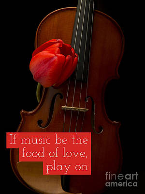 Photograph - If Music Be The Food Of Love, Play On by Edward Fielding