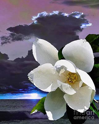 Digital Art - Illumination by Laurel D Rund