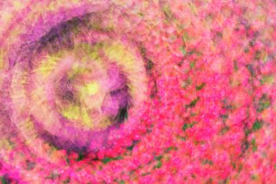 Photograph - Impression Series - Floral Galaxies by Ranjay Mitra