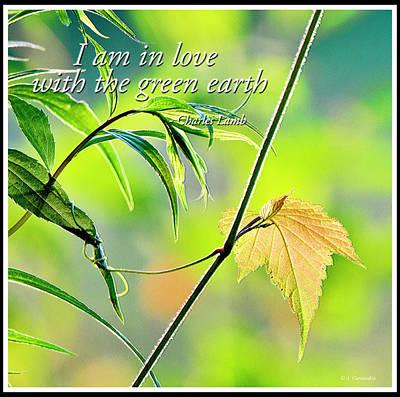 Digital Art - In Love With The Green Earth by A Gurmankin